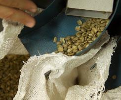 Alejandro Fandino desindustrializacion Colombia cafe
