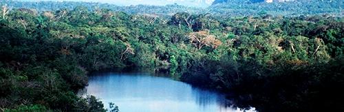 Álvaro Pardo Freno locomotoras mineras parque Chiribiquete reserva natural