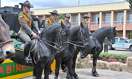 Policía rural: ¿…Y para qué una gendarmería?