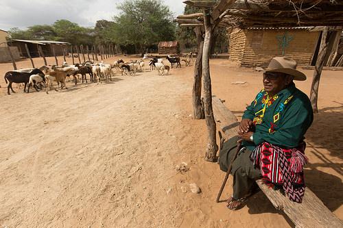 Ranchería Wayuu en La Guajira.