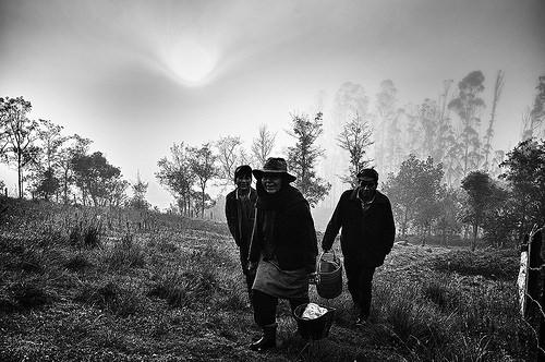 Trabajadores campesinos en Boyacá.