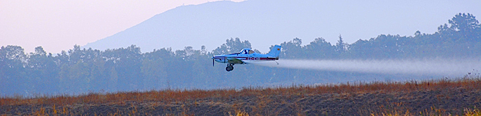 Fumigación aérea.