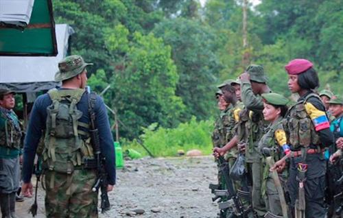 Mujeres guerrilleras del Frente 49 de las FARC.