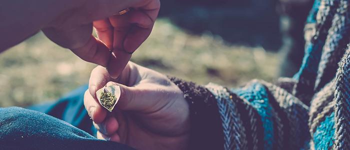Consumidores de marihuana