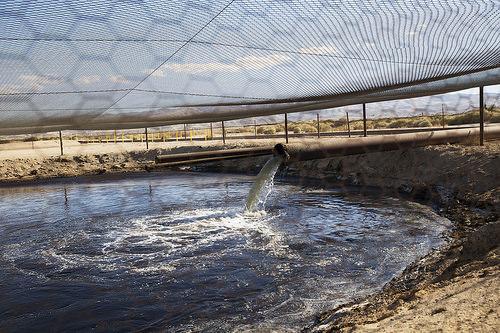 Residuos contaminados producto del fracking son arrojados a un pozo sin aislante en California.