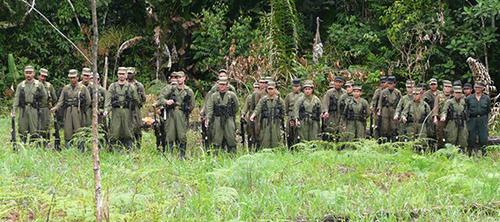 Guerrilleros del frente 33 de las FARC.