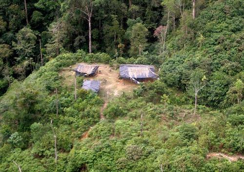 Laboratorio de coca en medio de la selva.