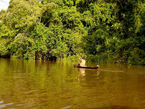 Parque Nacional Amacayau en el departamento de Amazonas.