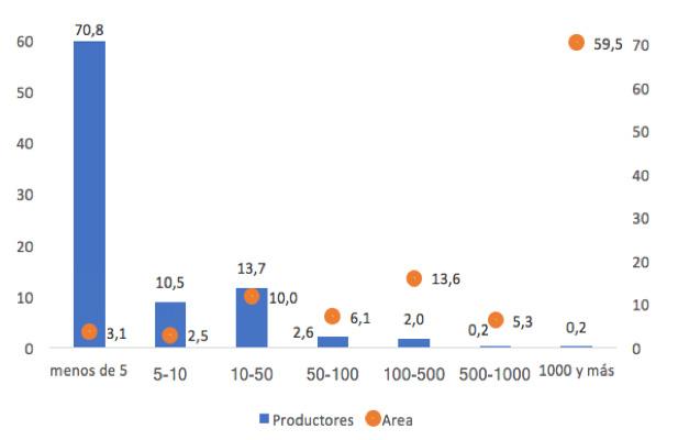 Distribución de los productores y del área