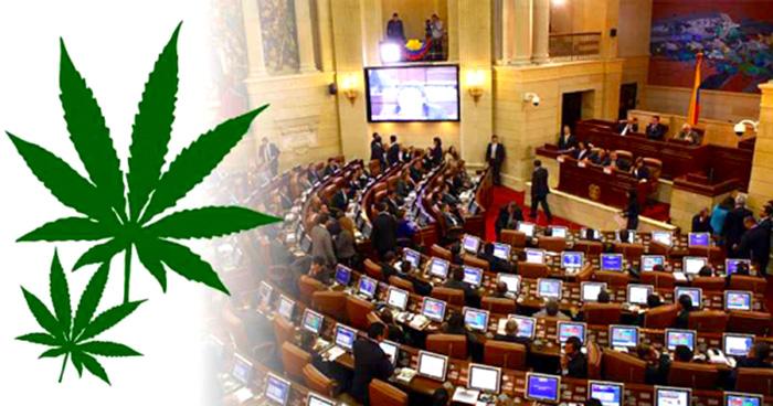 Debates sobre la legalización y la dosis mínima.
