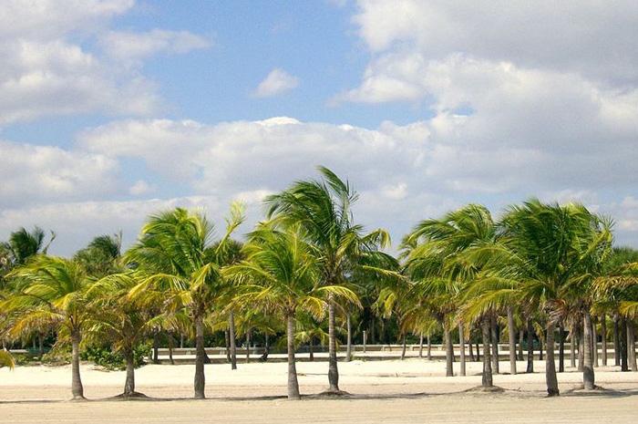 Playas de Florida.