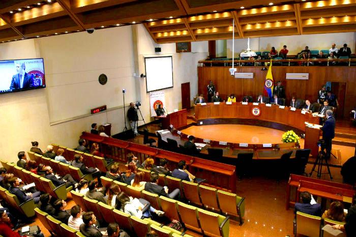 Audiencia Pública ante la Corte Constitucional.