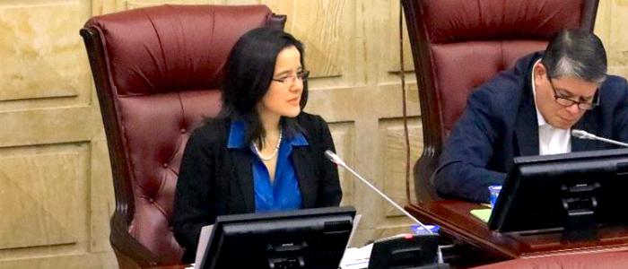 Ministra Silvia Constain en debate del proyecto de ley
