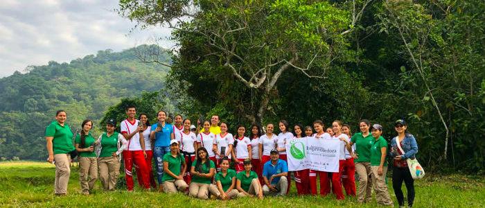 Negocios verdes para combatir la deforestación.