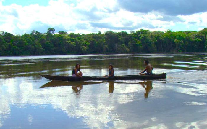 Sostenibilidad en el Amazonas.