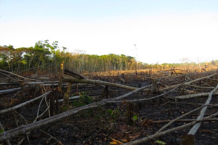 La preservación del parque es fundamental para la conservación biológica y cultural del corredor ecológico