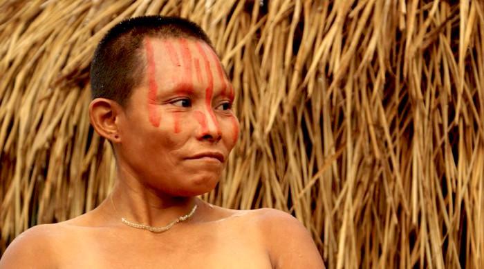 Los pueblos no contactados sufren por deforestación.