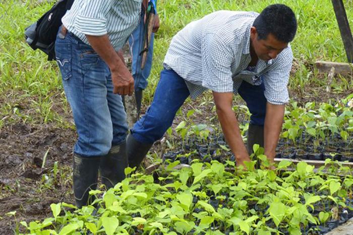 Foto 4.4 Ministerio de Agricultura ¿En qué quedan los acuerdos con los distintos grupos que están relacionados con el agro?