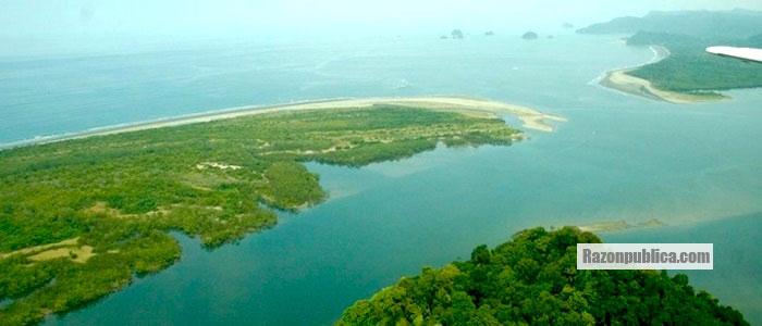 Puerto Tribugá en riesgo ecológico