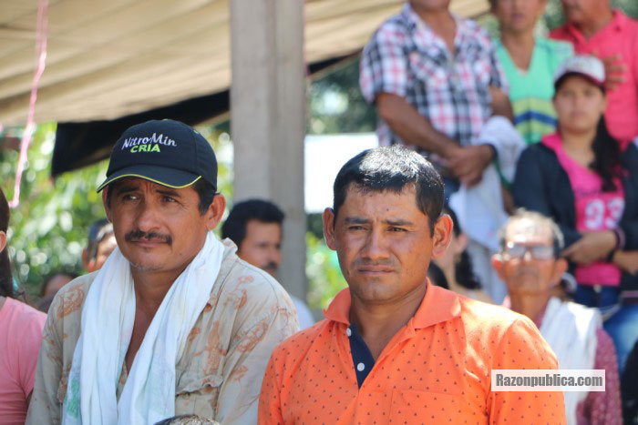 Muchos campesinos recurren a la coca sin más opciones para sobrevivir