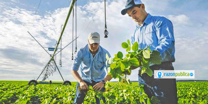 Ampliar la productividad del campo con el uso de tecnología es un paso necesario