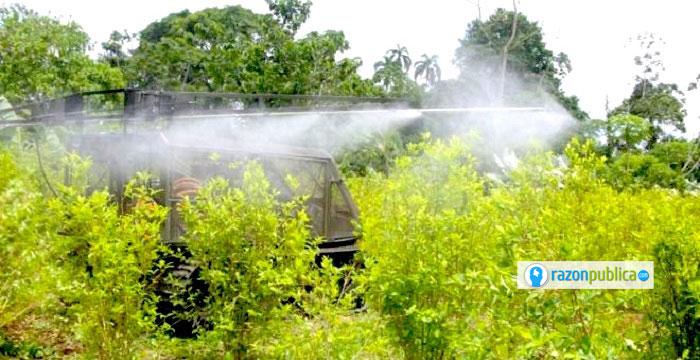 La erradicación y la fumigación mantendrán los cultivos disminuyendo, pero a costa de necesitar erradicar y fumigar incesantemente