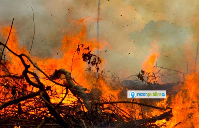 """Instituciones en Brasil dieron piel al """"día del fogo"""", un día para quemar la selva que se fue moviendo a diferentes estados del país."""