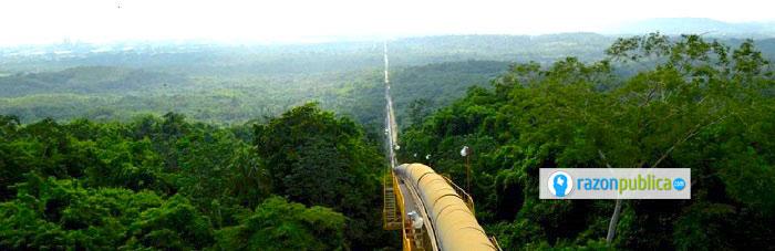 El oleducto Caño-Limón Coveñas ha sido clave para el crecimiento y la supervivencia del grupo guerrillero.