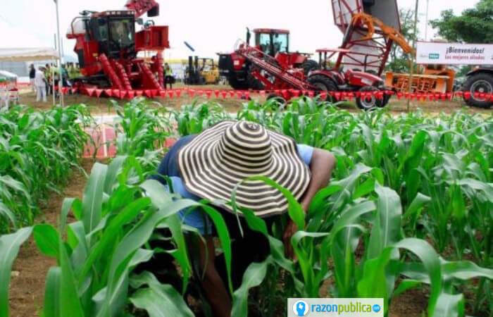 cambios en la producción de alimentos