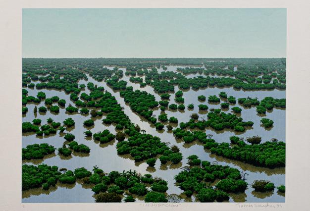 Tomas-Sanchez,-Inundacion